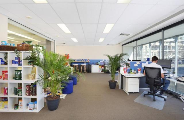 115 Alexander Street, CROWS NEST NSW, 2065