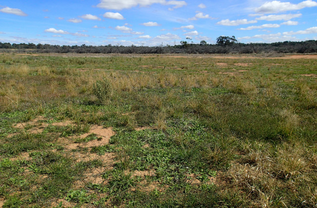 Lot/38 Defence Drive, MULWALA NSW, 2647