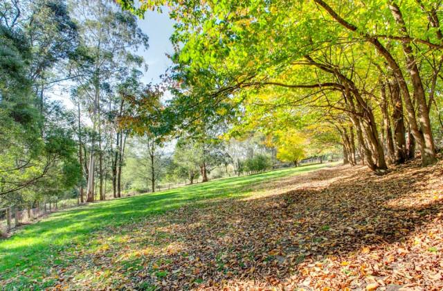 6 Rainy Hill Road, COCKATOO VIC, 3781