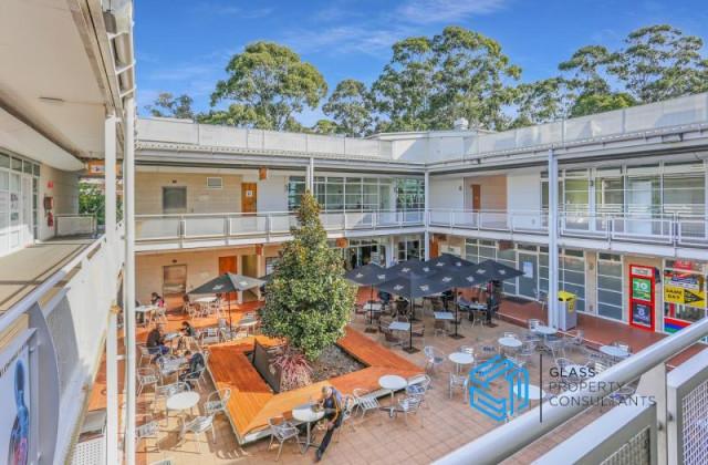 3 Julius Avenue, MACQUARIE PARK NSW, 2113